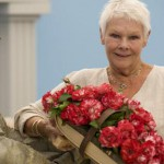 Dame Judi Dench rose tops Hampton Court Palace Flower Show