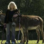 'Buttleflies' creator, Carla Lane, returns to the world of comedy