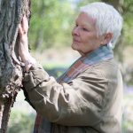 Happy 83rd, Dame Judi Dench! Trees and Champagne for everyone!