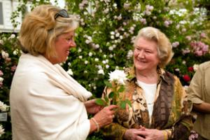 Hyacinth to attend RHS Chelsea Flower Show