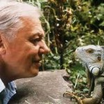 David Attenborough's back garden solves 130+ year old murder mystery