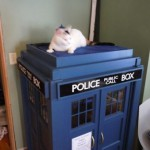 Fancy a TARDIS Cat Playhouse for that special someone?