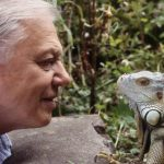 Happy 90th, Sir David Attenborough!