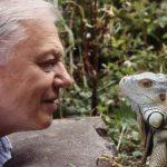 Happy 90th, Sir David Attenborough!