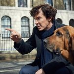 Does first look at 'Sherlock 4' give a hint as to a new 4-legged sidekick?