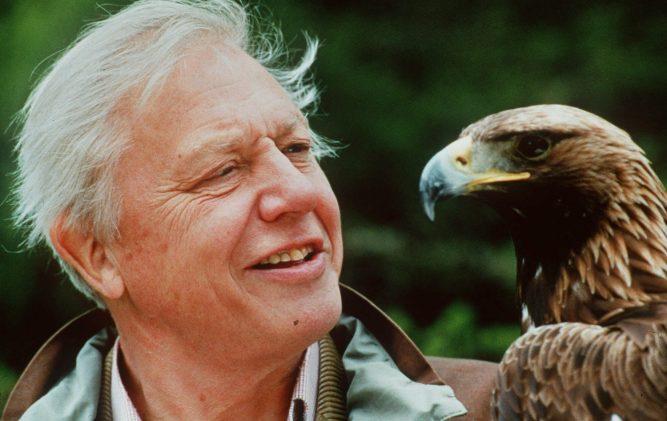 Sir David Attenborough – Celebrating 92 years in 92 seconds