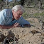 BBC's 'Bitesize Daily' provides kids the opportunity to learn from Sir David Attenborough and others